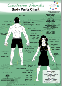 Cundeelee Wangka body parts chart